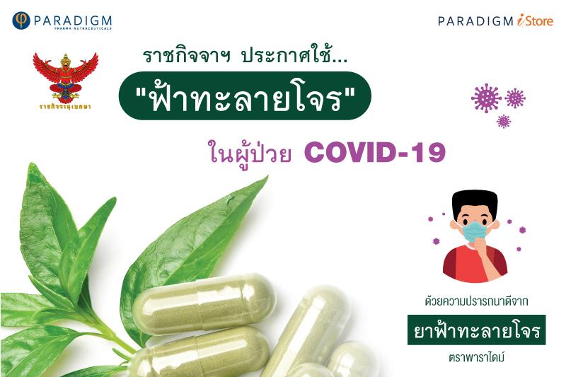 ราชกิจจาฯ ประกาศใช้ ฟ้าทะลายโจร ในผู้ป่วย COVID-19